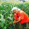 【小平ジモティ】採れたて!野菜と花の摘み取り農園 Ben's farm【遠距離恋愛らしい】