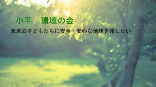 【プロボノ】小平・環境の会 HPを仮作成中 【ボランティア】