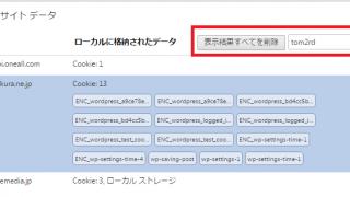 【WordPress】Chrome で全部Cookie消せと書かれているけど・・・本当は、ひとつ消せばいい【備忘録】