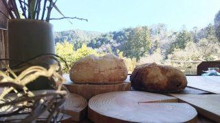 【DIYクリエーターズ】フクジュソウと桃が咲いてました。水回りの点検と、蜜蝋仕上げと、パン窯の土台【Re:Innovation】