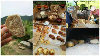 【DIYクリエーターズ】賢治の農楽校の収穫祭でアースオーブンお披露目会、畑のパン・ピザ祭り状態でおなかいっぱい(笑)【天然酵母】