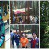 【森と踊る】高尾でやってるヒノキの皮むき間伐体験に行ってきました【500年の森に】