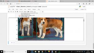 【物体認識】TensorflowのObject Detection APIをWindows ローカルでやるとハマる所【ラジコン自動運転】